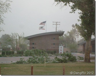 Mayflower Park Storm