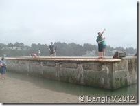 Japanese tsunami pier
