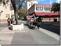 San Antonio horse carriage