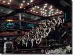 Carnival Singing Waiters