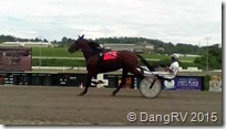 Harness racing warmup