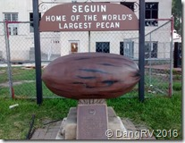 World's Largest Pecan